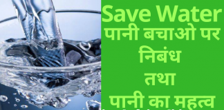 save water essay in hindi